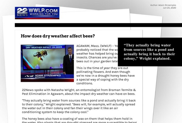 Braman-How-Dry-Weather-Affect-Bees-WWLP-Article